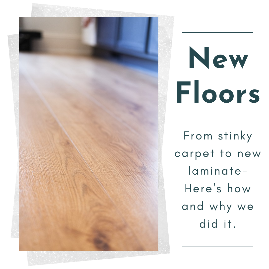 New laminate wood floors at Little River House by Becca McLagan Real Estate